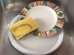 spugnetta-piatti-mostro-con-miliardi-di-batteri