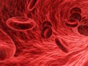 vasi-sanguigni-scoperta-verso-elisir-giovinezza